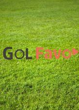 GOL Favo♡